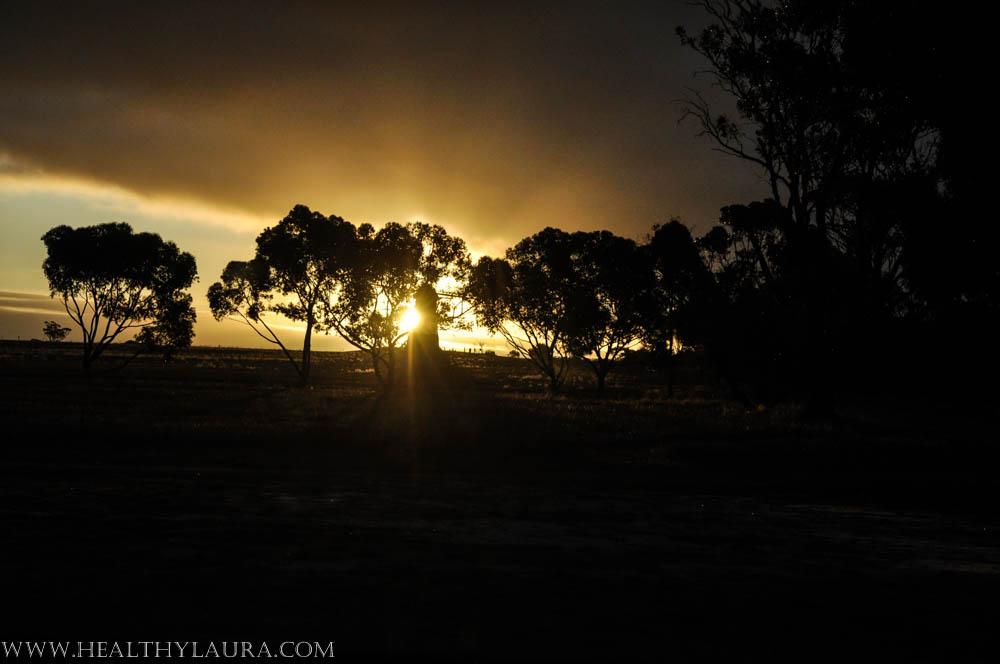 Western Australia, near Mt. Barker