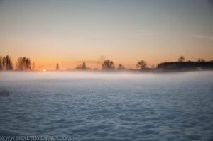 Winter in Estonia (in the beginning of November already)